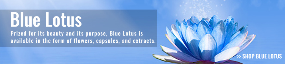 slide - blue lotus