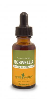 Boswellia Liquid Extract