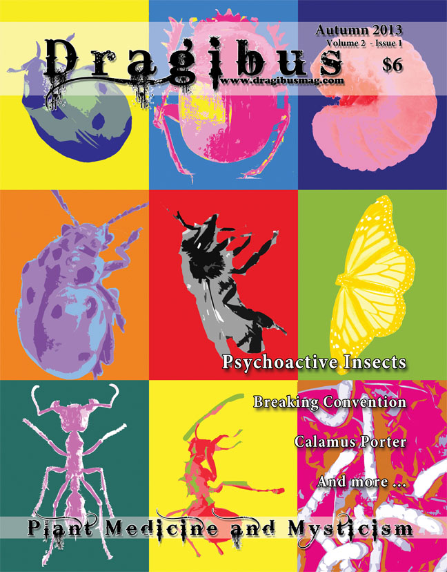 buy dragibus magazine!