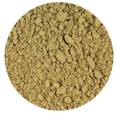 Horsetail/Shavegrass Powder