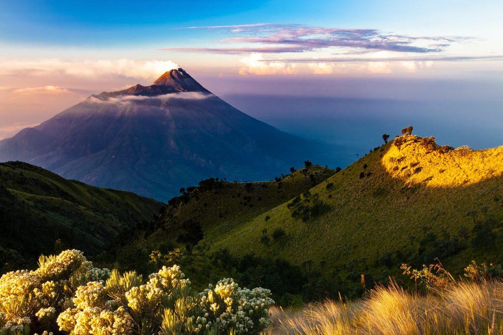 indonesia kratom