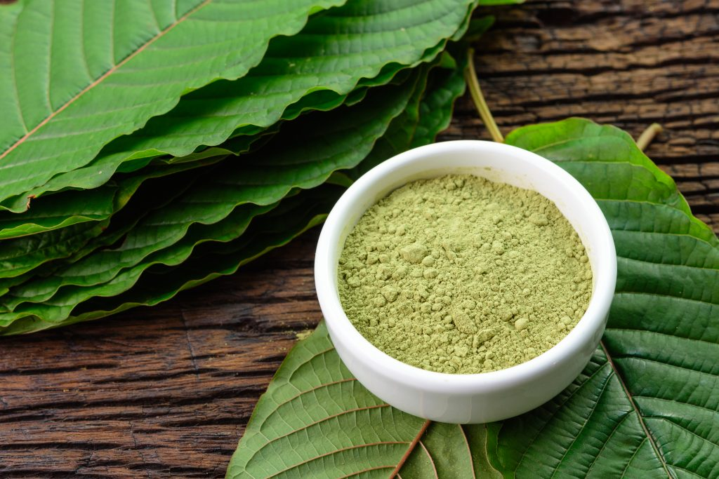 kratom powder leaf